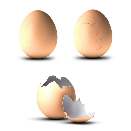 three animals: three eggs, one entire, another cracked and the last one open, illustration over white background