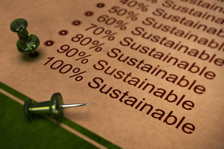 environmental concept: One hundred percent sustainable word, concept for improving sustainability in business Stock Photo