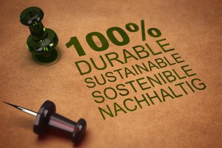 sustentabilidad: El cien por cien sostenible palabra, el concepto de sostenibilidad, cuatro idiomas, Inglés, francés, alemán, español render 3D