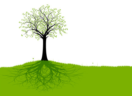 outlines: Vector tree with roots and green grass with branches, green foliage and black trunk. Silhouette
