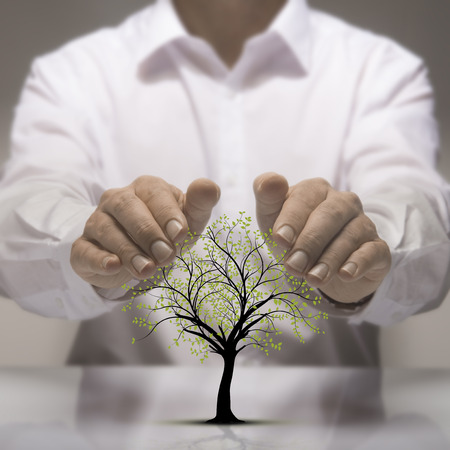 Two hands above a tree drawing. Environmental protection concept