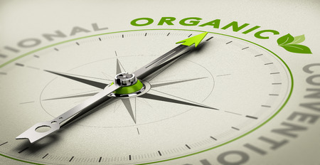 food research: Compass with needle pointing the word organic. Green and grey tones over beige background, Conceptual illustration for healthy eating and organic farming. Stock Photo