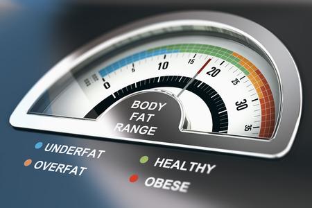 Lichaamsvetbereik calculator met de woorden ondergronds, gezond, overmatig en zwaarlijvig. 3D illustratie. Stockfoto