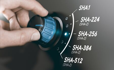 Man turning a cryptography switch to change the cryptographic hash algorithm to SHA-256. Composite image between a hand photography and a 3D background. Stock Photo