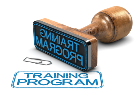 Rubber stamp with the text training program over white background. 3D illustration