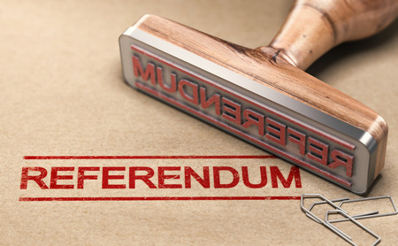 3D illustration of a rubber stamp with the text referendum printed on paper background