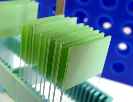 Microscope slides on a holder in a research lab