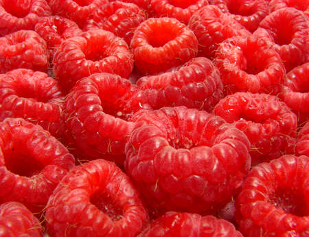 organic raspberry: Red and juicy organic raspberry close up
