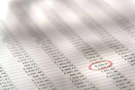 Spreadsheet met kolommen van de financiële cijfers en individueel nummer omcirkeld in het rood