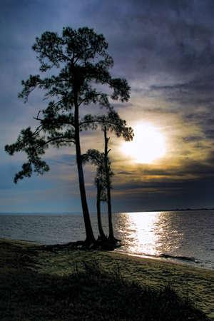 Coloris sur une large rivière avec arborescence PIN silhouette sur une plage  Banque d'images - 7298550