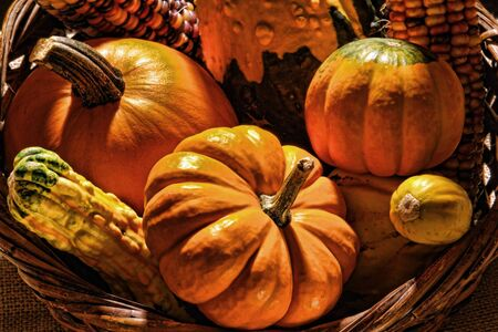 Pumpkins and fall vegetables in a wicker basket for Thanksgiving decoration  photo