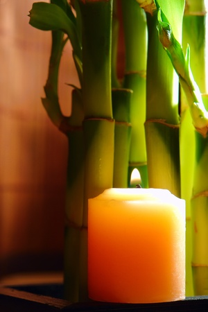 Aromatherapy candle burning with a soft glow flame near green bamboo stems for a quiet relaxing Zen meditation session in a spa Stock Photo - 10266919