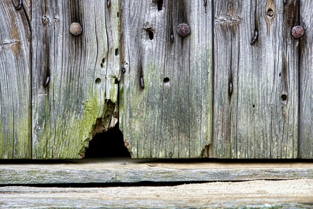 house mouse: Mouse entrance hole at the bottom of an antique barn door