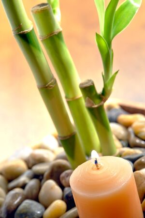 Burning aromatherapy candle with green bamboo stems for a relaxing Zen meditation ambiance in a spa