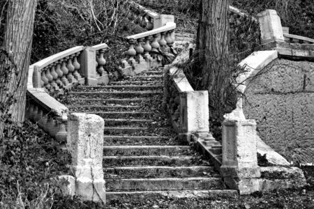 overrun: Abandoned monumental staircase ruin in an ornamental mansion garden overrun by vegetation and trees Stock Photo