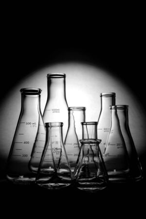 Glass Erlenmeyer flasks empty and ready for an experiment in a science research lab