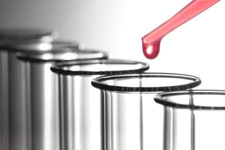 pipette: Pipeta de laboratorio con gota de l�quido qu�mico Rosa por encima de los tubos de ensayo vac�os para un experimento de qu�mica biol�gica en un laboratorio de ciencia de investigaci�n aplicada