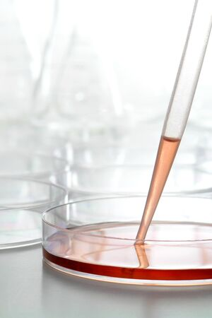 Plastic pipette with water condensation and chemical solution inside a laboratory Petri dish filled with red liquid for a biology experiment in a science research lab photo