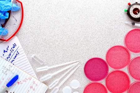 Petri dishes filled with pink eosin media solution and hand written chemistry notes with assorted process equipment on a laboratory bench surface for a scientific experiment in a science research lab Foto de archivo