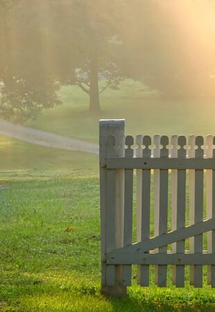 soft diffused light: Old wood garden gate in a meadow in soft morning fog haze light Stock Photo