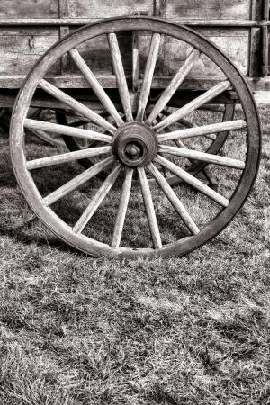 americana: Old American pioneer prairie schooner wagon antique wood spoke wheel over prairie grass