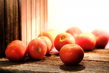 Ripe and red fresh natural organic tomatoes photo
