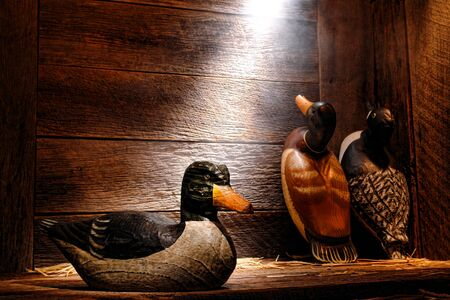 decoy: Antique carved wood hunting duck decoy and aged traditional vintage decoys in an old wooden hunter barn or cabin in soft diffused light