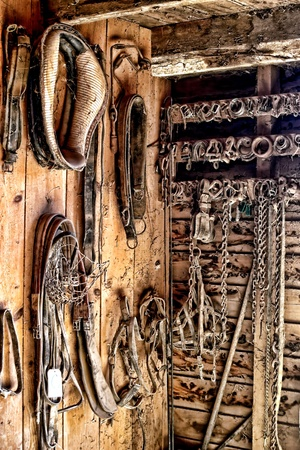 tack: Vintage draft horse harness gear and equipment on wood plank wall in an old barn tack room on a rural farm