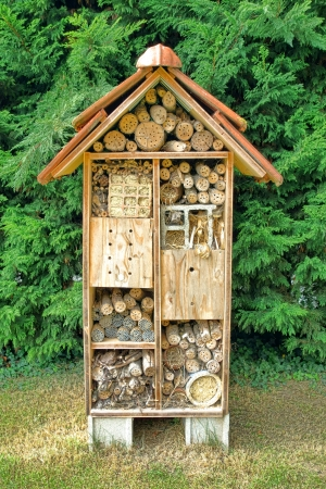 pollinator: Native mason bee pollination and housing nesting box tree made of wood as a house complex for attracting pollinating bees  Stock Photo