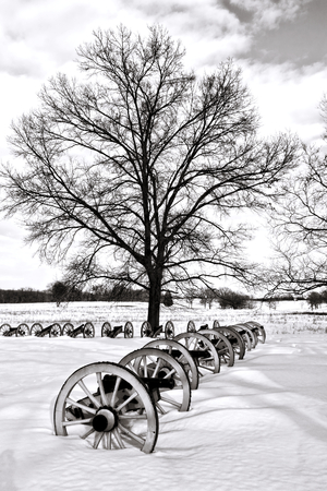 forge: American Revolutionary War cannons defense battery in defensive artillery formation and old tree in winter snow at Valley Forge National Historical Park military camp of the Continental Army near Philadelphia in Pennsylvania