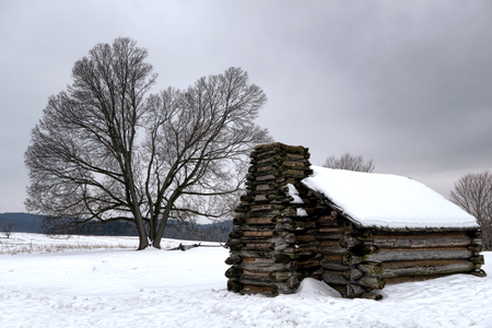American Revolutionary War soldier housing wood cabin and big old tree in winter snow at Valley Forge National Historical Park military camp of the Continental Army near Philadelphia in Pennsylvania