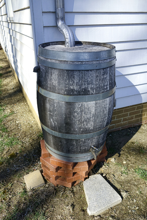 Wood rainwater tank rain barrel for storm water runoff collection and recycling reuse with irrigation spigot at the corner of a rural house building