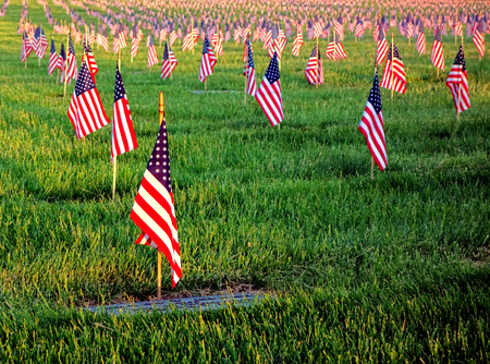 US American flags planted in honor of veterans graves with dignified respect in patriotic remembrance in a cemetery on Memorial Day at sunset Stok Fotoğraf