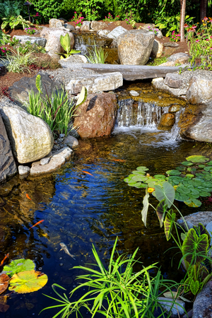 koy: Luxury landscaped environmental garden with fancy plant landscaping and stone landscape decor around a decorative pond decorated with water lilies and stocked with koy fish under a waterfall  Stock Photo