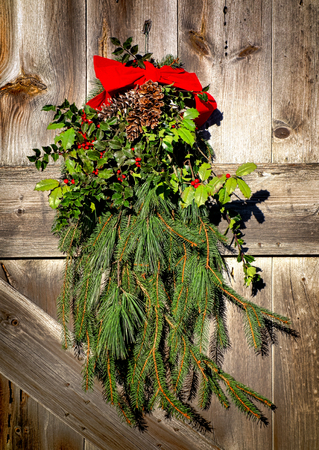 Old fashioned country Christmas holiday wreath decoration pendant arrangement with evergreen branches and holly decorated with pine cones and red bow on an antique wood barn door Imagens