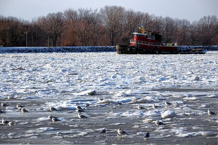 fluvial: Icebreaker tugboat breaking floating ice on a cold frozen river in winter to open a navigable waterway safety passage to fluvial boat and commercial ship traffic