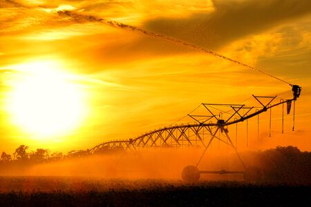 waterwheel: Center pivot irrigation waterwheel overhead sprinkler pipe trusses assembly over wheeled tower spraying water over crop in an agricultural field at sunset Stock Photo