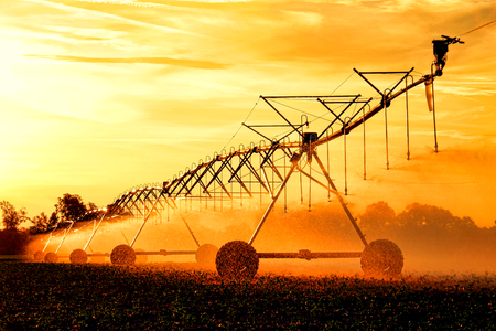 Agricultural irrigation center pivot waterwheel overhead sprinkler pipe trusses assembly with wheeled tower spraying water over growing crop in a field before sunset Archivio Fotografico