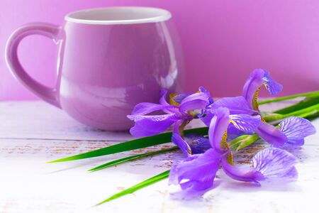 A bunch of blue irises and lilac cup Stock Photo