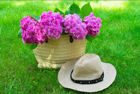 Pink hydrangea flowers in summer bag and sun hat on lush green grass.