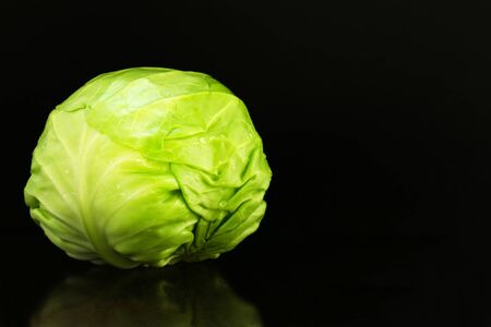 Cabbage on black background.Copy space 스톡 콘텐츠