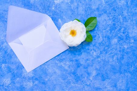White roses and an open envelope on a light blue background. Declaration of love, a template for a card.Copy space