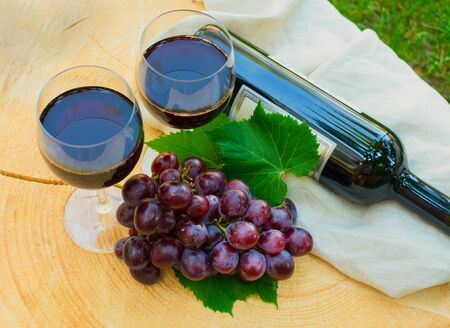 Two glasses of red wine and a branch of grapes on a wooden table on a background of green grass. View from the top. 写真素材