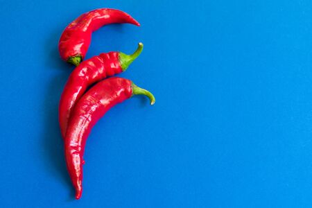 Red chili peppers on a blue background. Copy space.