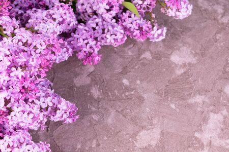 Bouquet of lilac flowers on a gray textural background. Copy space. Фото со стока
