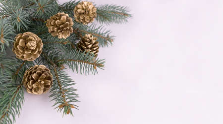 Christmas tree branch and decorated pine cones background on white background.Christmas background.Copy space. Stock fotó