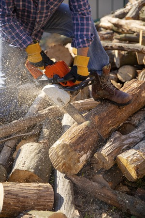 The worker works with a chainsaw. Cut the firewood ?hainsaw. Chainsaw close up. Woodcutter saws tree with chainsaw on sawmill. Chainsaw in action cutting wood. Man cutting wood with saw, dust and movements.