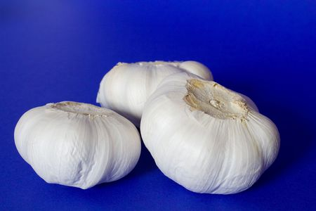 garlic isolated on the blue