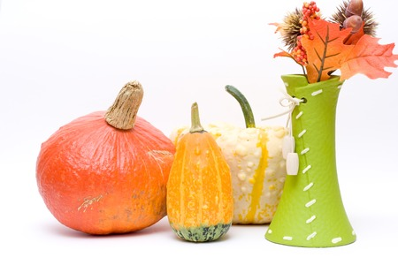 decoration isolated on white. Fresh pumpkins. photo