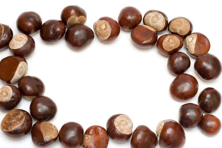 border made of chestnuts isolated on white Stock Photo - 1852166